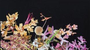 make-banner-1600x900